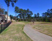 169 Peppermint Lane, Blythewood image