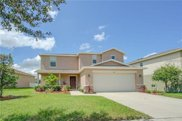 11015 Running Pine Drive, Riverview image