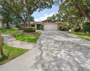 29 Pinewood Circle, Safety Harbor image