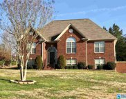 255 Ridgefield Dr, Odenville image