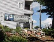 530 E Hiawatha Dr Unit 110, Lake Delton image