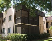 11812 Raintree Village Boulevard Unit C, Temple Terrace image