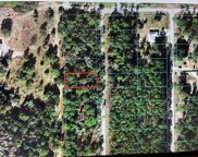 TBD Sw South Water Court, Dunnellon image