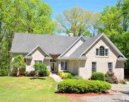 411 Luther Road, Apex image