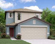 7422 French Marigold Avenue, Tampa image