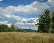 8 Sky Country  RD, Toutle image