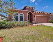 11226 Spring Point Circle, Riverview image