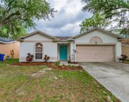 1205 Tiger Wood Court, Valrico image