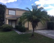709 Periwinkle Pointe Place, Seffner image