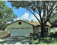 11128 Windpoint Drive, Tampa image
