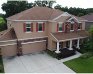 11219 Coventry Grove Circle, Lithia image