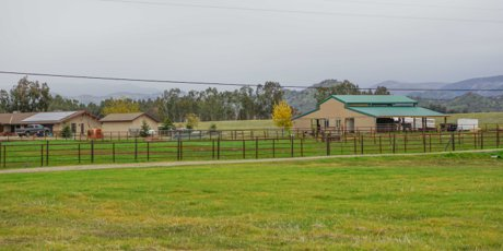 Equestrian home & pasture in Sanger CA