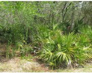 266 Dirksen And 261 Toms Road Drive, Debary image