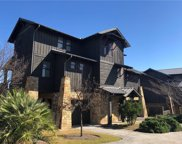 2208 Seabiscuit Cove Unit 133, Spicewood image