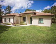 265 NW 17th St, Naples image