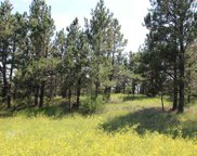Tract 4 Lone Elk Subd I, Custer County image