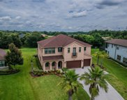 17829 Newcastle Field Drive, Lutz image