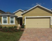 16031 Yelloweyed Drive, Clermont image