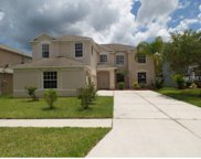 10604 Grand Riviere Drive, Tampa image