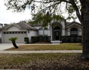 16146 Dogwood Hill Street, Clermont image