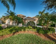 9847 Sago Point Drive, Seminole image