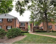 13419 Land O Woods Unit #3, Chesterfield image
