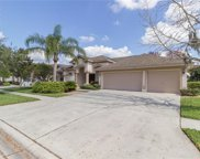 19211 Inlet Cove Court, Lutz image