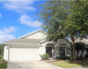 11657 Tropical Isle Lane, Riverview image