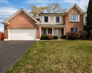 50 Copperwood Drive, Buffalo Grove image