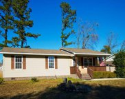 787 University Forest Circle, Conway image