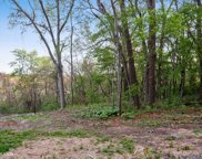 10874 Basswood Drive, New Buffalo image