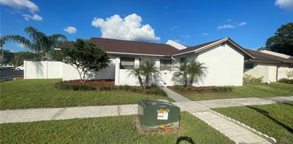 5407 Hopedale Drive, Tampa