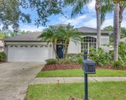 11720 Derbyshire Drive, Tampa image