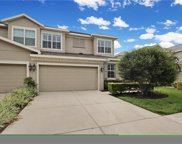 4723 Osprey Ridge Circle, Palm Harbor image