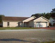 868 Castlewood Drive, Conway image