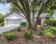 16102 Dowling Court, Tampa image