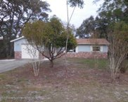 2070 Waterfall, Spring Hill image