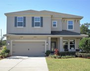 7957 Pleasant Pine Circle, Winter Park image