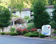 87  Willow Road Unit #A-11, Waynesville image