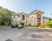 3930 Cherokee Woods Way Unit 403, Knoxville image