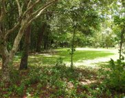 Lot 12 Red Maple Dr., Pawleys Island image