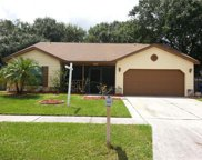 12828 Tallowood Drive, Riverview image