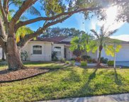 11308 Pine Lilly Place, Lakewood Ranch image