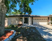 3988 Orchard Hill Circle, Palm Harbor image