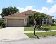 1435 Tawnyberry Court, Trinity image