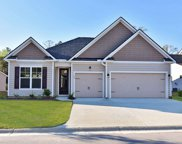 115 Black Pearl Court, Pawleys Island image