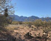 15051 N Gangarebo, Tucson image