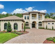 4118 Carrollwood Village Forest Drive, Tampa image