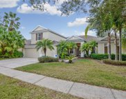 19311 Autumn Woods Avenue, Tampa image