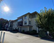 2568 Dingwall  St Unit #308, Duncan image